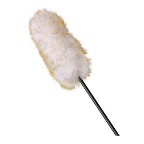Duster with Extension Handle